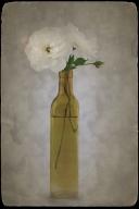 Rose Vase Antiqued3sf
