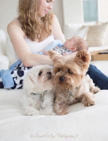 ChristinaDavi&Dogs2SF