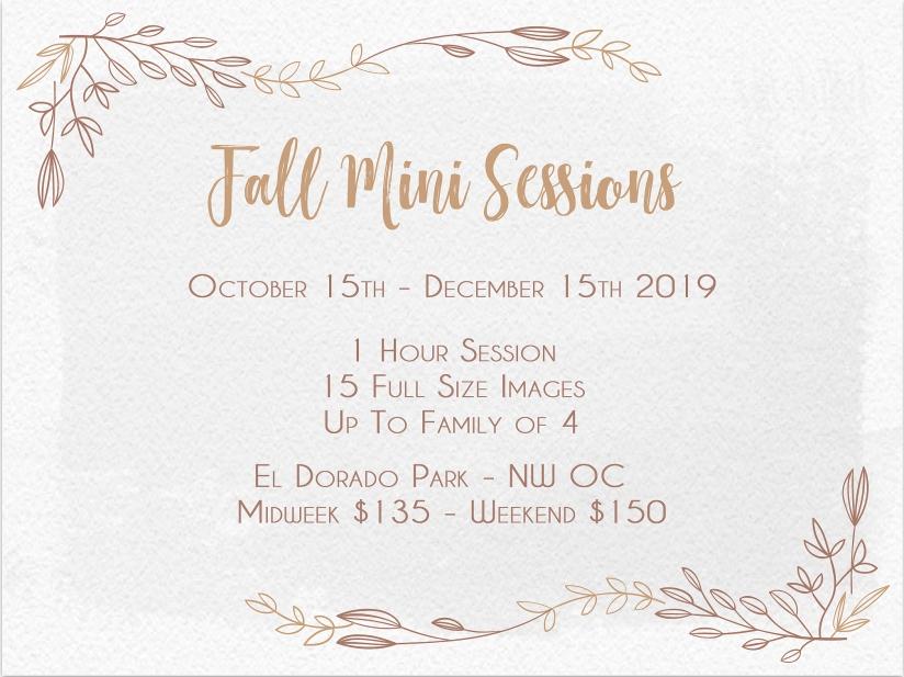 fall-mini-session-flyer-2019